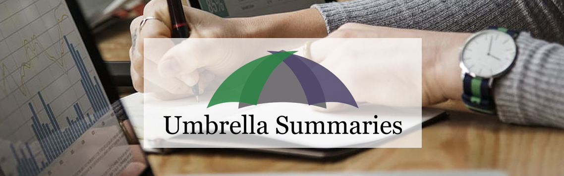 Umbrella Summaries logo placed in front of group of people meeting around a table at work